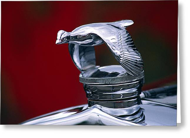 Vintage Hood Ornaments Greeting Cards - 1931 Ford Quail Hood Ornament Greeting Card by Carol Leigh