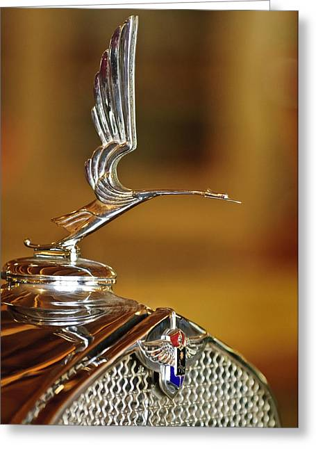 Lasalle Greeting Cards - 1931 LaSalle Hood Ornament Greeting Card by Jill Reger
