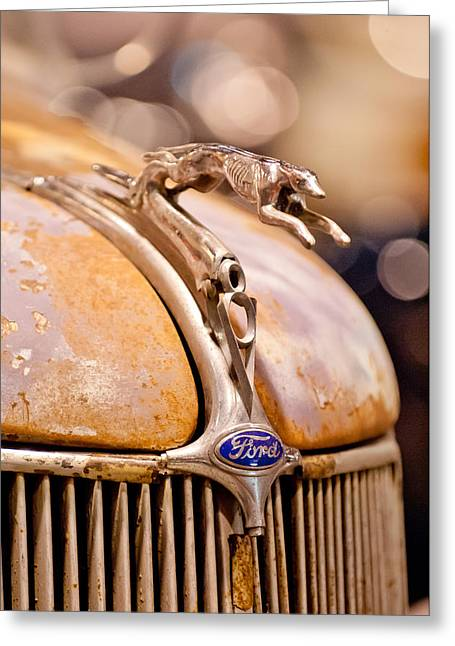 1936 Greeting Cards - 1936 Ford Cabriolet Hood Ornament Greeting Card by Jill Reger
