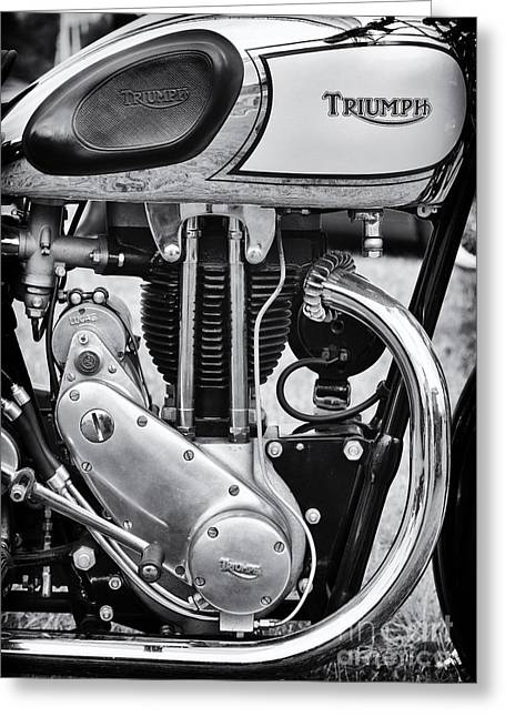 Tim Greeting Cards - 1936 Triumph Tiger 80 Monochrome Greeting Card by Tim Gainey