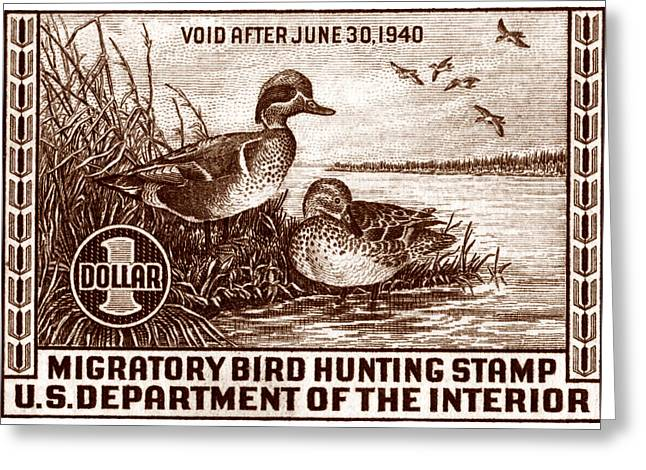 Recently Sold -  - Hunting Bird Greeting Cards - 1939 American Bird Hunting Stamp Greeting Card by Historic Image