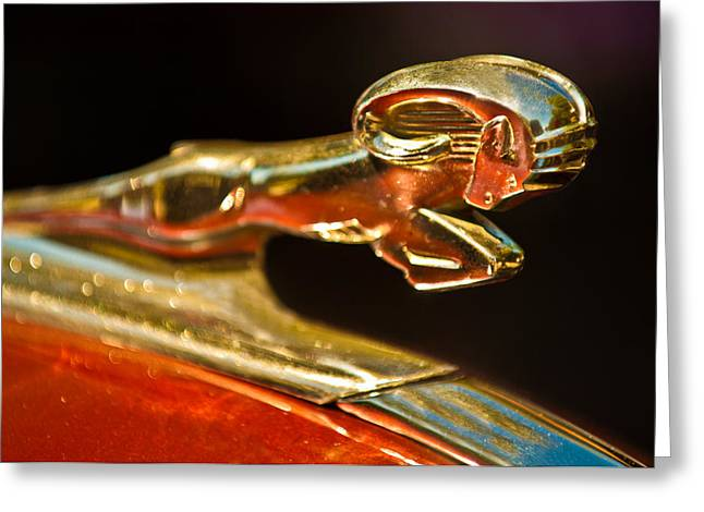 1930Õs Greeting Cards - 1939 Dodge Business Coupe V8 Hood Ornament Greeting Card by Jill Reger