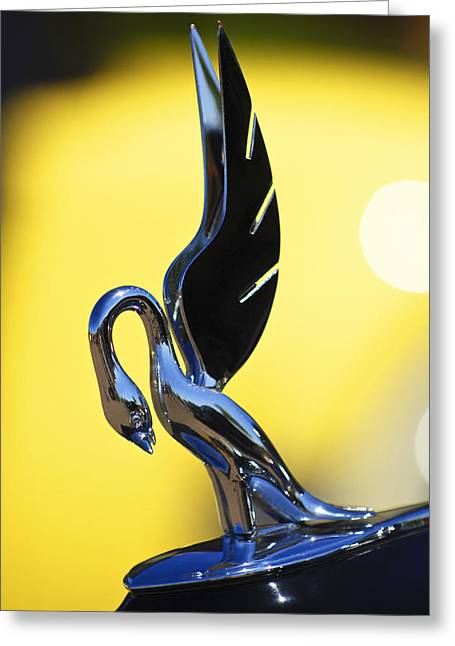 Vintage Hood Ornaments Greeting Cards - 1939 Packard Hood Ornament Greeting Card by Jill Reger