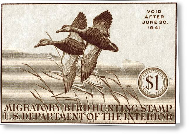 Postal Paintings Greeting Cards - 1940 American Bird Hunting Stamp Greeting Card by Historic Image