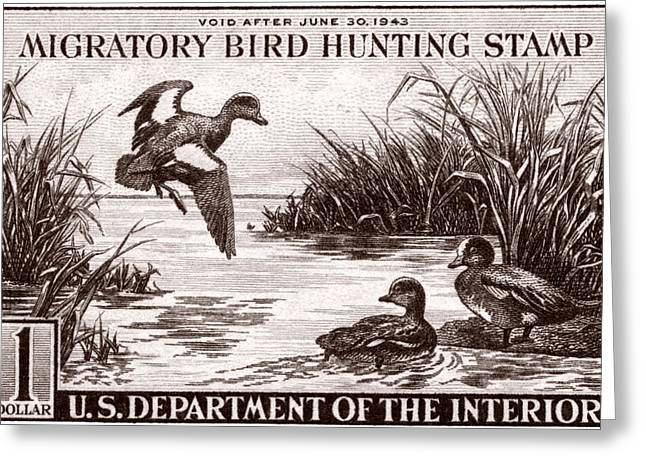 Postal Paintings Greeting Cards - 1942 American Bird Hunting Stamp Greeting Card by Historic Image