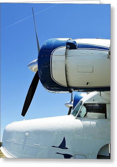 Commuter Plane Greeting Cards - 1943 Grumman Nose Cone Greeting Card by Pamela Patch