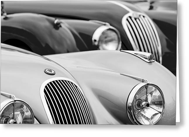 Famous Photographers Greeting Cards - 1950 Jaguar XK120 Roadster Grille 2 Greeting Card by Jill Reger
