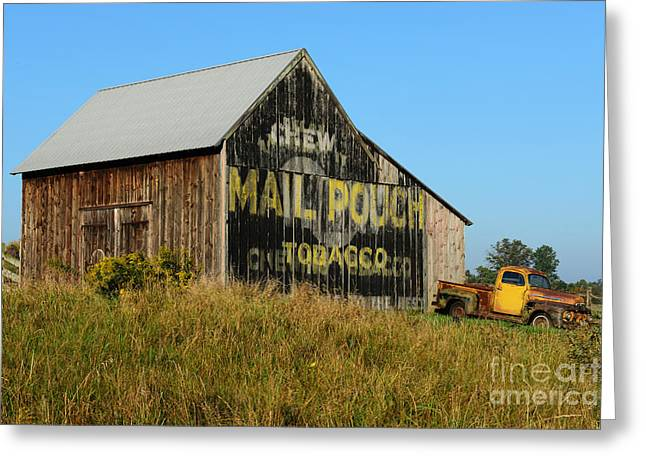 Chewing Tobacco Greeting Cards - 1951 Ford Pick Up Truck at the Barn Greeting Card by Paul Ward