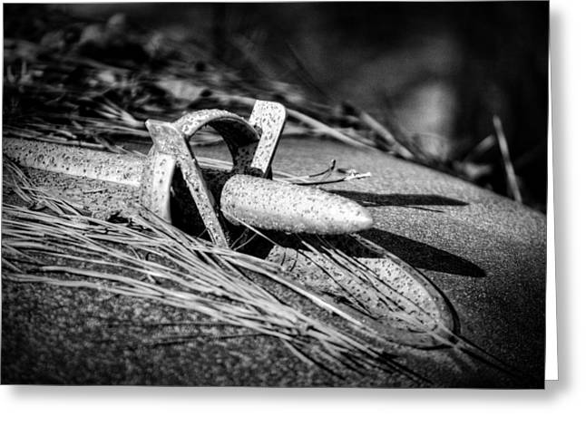 Pine Needles Greeting Cards - 1953 Buick Skylark Hood Ornament in Black and White Greeting Card by Greg Mimbs