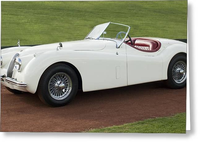 Famous Photographer Greeting Cards - 1954 Jaguar XK120 Roadster  Greeting Card by Jill Reger