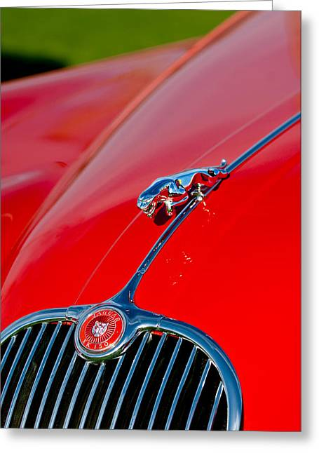 Sot Greeting Cards - 1959  Jaguar XK150 SOTS Hood Ornament - Grille Greeting Card by Jill Reger