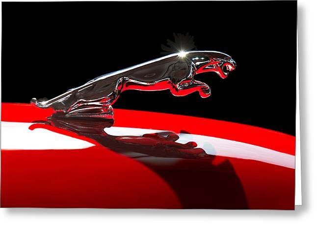 Collector Hood Ornament Greeting Cards - 1961 Jaguar Kougar Hood Ornament -0569C Greeting Card by Jill Reger