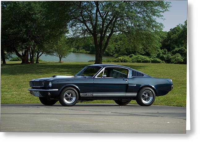 Mustang Fastbacks Greeting Cards - 1965 Ford Mustang Fastback Greeting Card by Tim McCullough