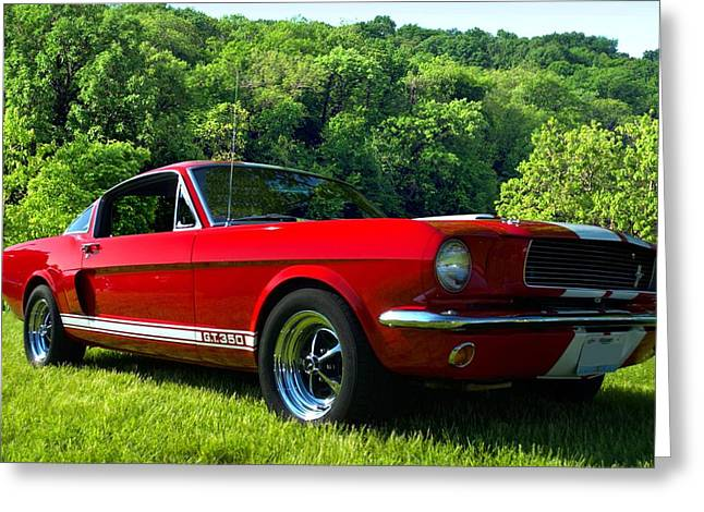 Mustang Gt350 Greeting Cards - 1965 Mustang GT350 Greeting Card by Tim McCullough