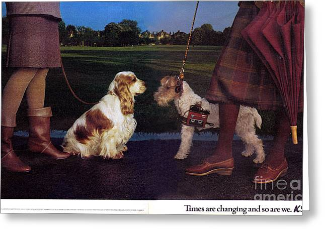 Dog Walking Greeting Cards - 1980s Uk K Shoes Magazine Advert Greeting Card by The Advertising Archives