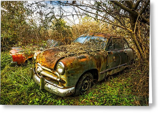 Rusted Cars Greeting Cards - 1949 Ford Greeting Card by Debra and Dave Vanderlaan
