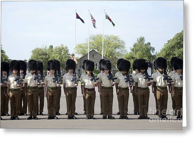 Cooperation Greeting Cards - 1st Battalion Welsh Guards On The Drill Greeting Card by Andrew Chittock