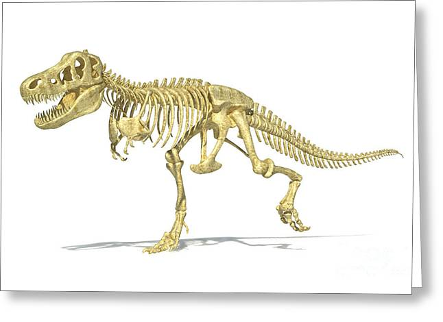 Aggressive Digital Greeting Cards - 3d Rendering Of A Tyrannosaurus Rex Greeting Card by Leonello Calvetti