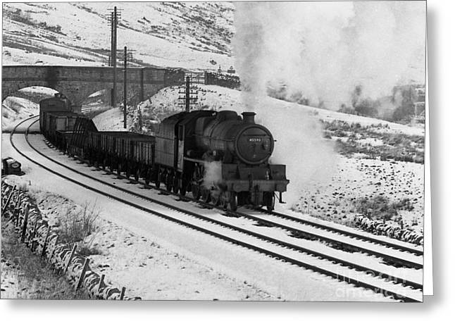 David Birchall Greeting Cards - 45593 Kholapur hauling winter freight Greeting Card by David Birchall