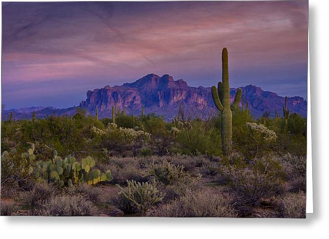 The Superstitions Greeting Cards - A Beautiful Desert Evening  Greeting Card by Saija  Lehtonen