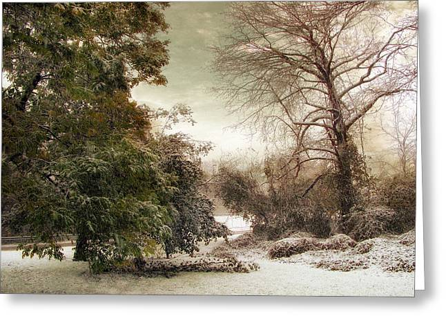 A Dusting Of Snow Greeting Card by Jessica Jenney
