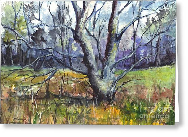 Landscape Framed Prints Greeting Cards - A Tree For Thee Greeting Card by Carol Wisniewski