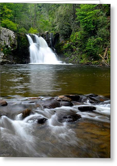 Tremendous Greeting Cards - Abrams Falls Greeting Card by Frozen in Time Fine Art Photography