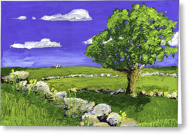 Tree In Maine Blueberry Field Greeting Card by Keith Webber Jr