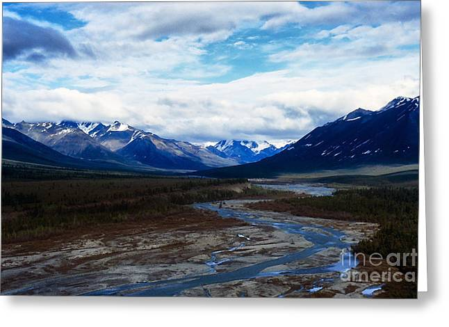 Fly In Greeting Cards - Alaska Mountain Range Greeting Card by Thomas R Fletcher