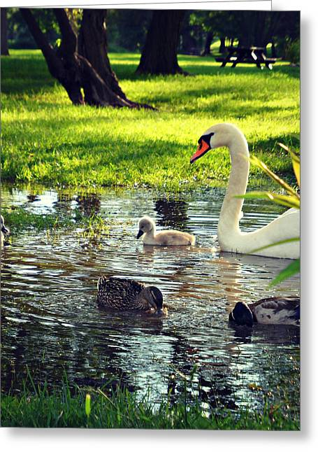 All In The Family Greeting Cards - All In The Family Greeting Card by Cyryn Fyrcyd