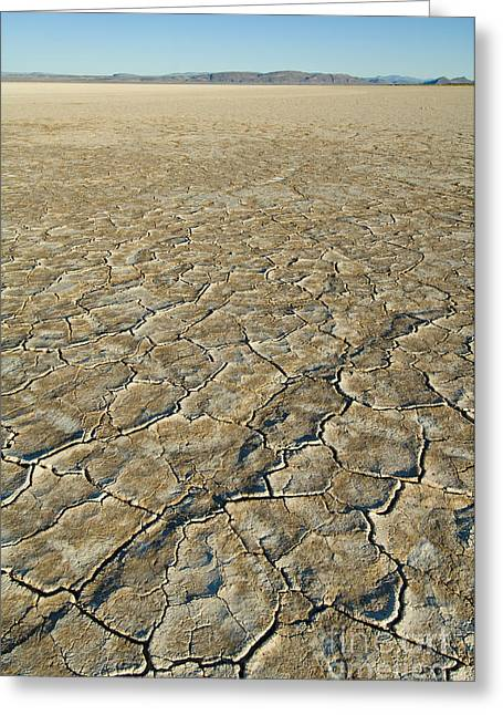 Dry Lake Greeting Cards - Alvord Desert, Oregon Greeting Card by John Shaw