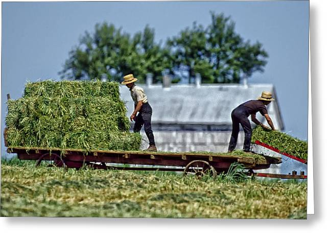 Amish Farms Greeting Cards - Amish Life on the Farm Greeting Card by Mountain Dreams