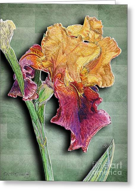 Painted Details Mixed Media Greeting Cards - Ancient Echoes Greeting Card by J McCombie