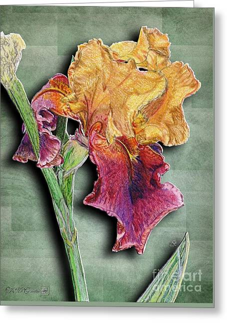 Spring Bulbs Mixed Media Greeting Cards - Ancient Echoes Greeting Card by J McCombie