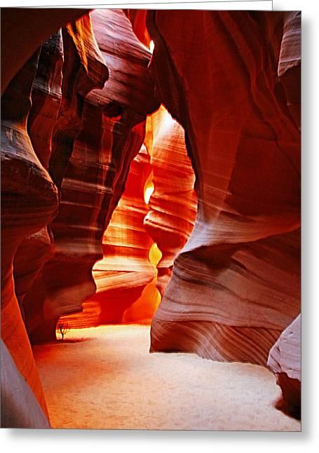Antelope Canyon Greeting Cards - Antelope Canyon  Greeting Card by Aidan Moran