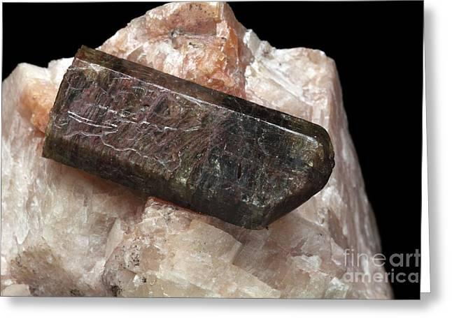 Calcium Phosphate Greeting Cards - Apatite Crystal Greeting Card by Dirk Wiersma