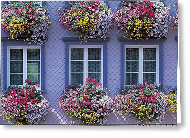 Flower Boxes Greeting Cards - Appenzell Switzerland Greeting Card by Panoramic Images