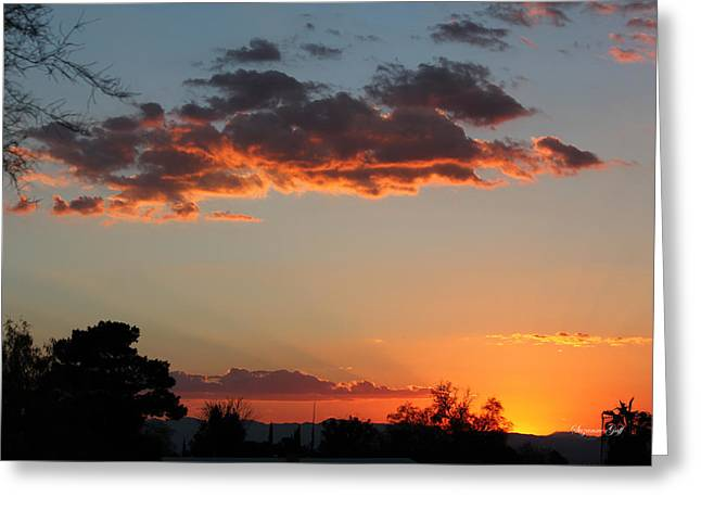 Sunset Posters Greeting Cards - Arizona Sunset III Greeting Card by Suzanne Gaff