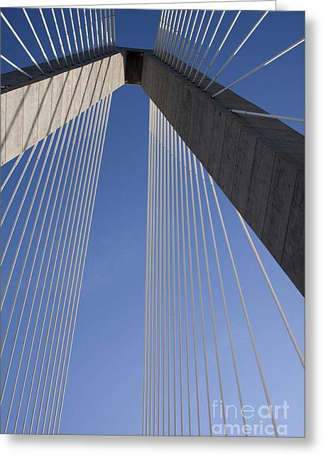 Arthur Greeting Cards - Arthur Ravenel Jr Bridge Charleston SC Greeting Card by Dustin K Ryan