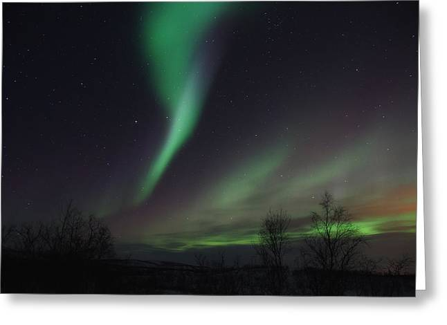 Streamer Greeting Cards - Aurora Borealis over Sweden Greeting Card by Mountain Dreams