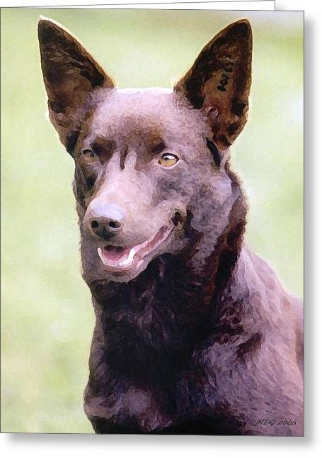 Kelpie Paintings Greeting Cards - Australian Kelpie Dog Portrait Greeting Card by Olde Time  Mercantile