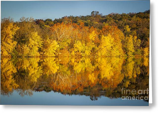 Radnor Greeting Cards - Autumn Color Greeting Card by Brian Jannsen