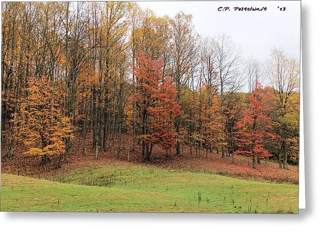 Autumn Color Greeting Card by Carolyn Postelwait
