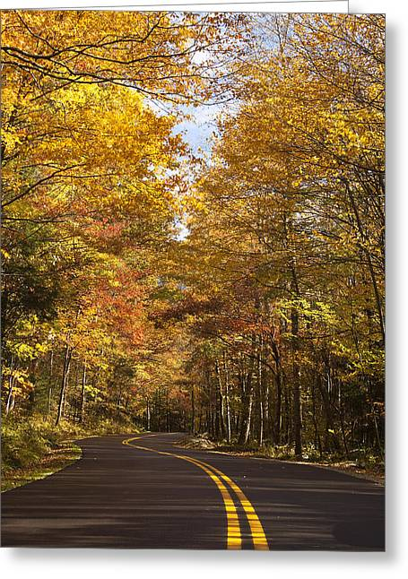 Mountain Road Greeting Cards - Autumn Drive Greeting Card by Andrew Soundarajan
