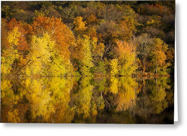 Radnor Greeting Cards - Autumn Foliage Greeting Card by Brian Jannsen