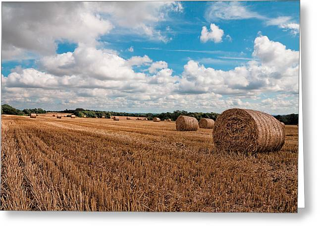 Hay Bales Greeting Cards - Autumn Harvest Greeting Card by Shirley Mitchell