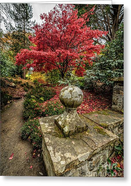 Stones Digital Art Greeting Cards - Autumn Path Greeting Card by Adrian Evans