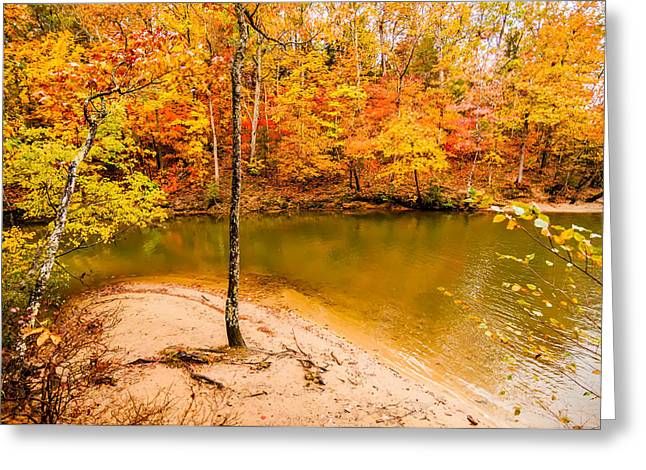 Lake Wylie Greeting Cards - Autumn Season At A Lake Greeting Card by Alexandr Grichenko
