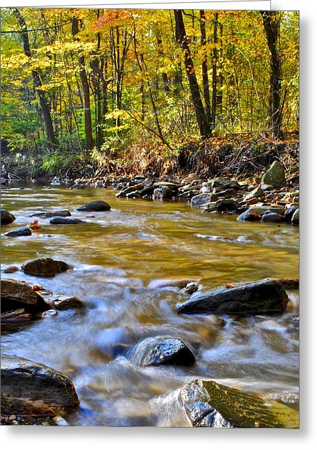 Eternal Flow Photographs Greeting Cards - Autumn Stream Greeting Card by Frozen in Time Fine Art Photography