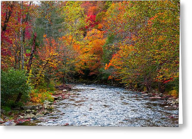 Tennessee River Greeting Cards - Autumns Glory Greeting Card by Lynn Bauer